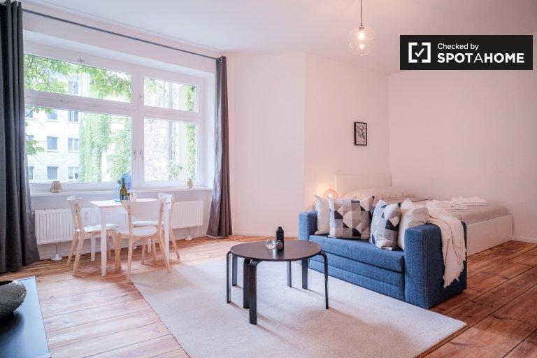 Stylowy apartament typu studio do wynajęcia w Mitte, Berlin