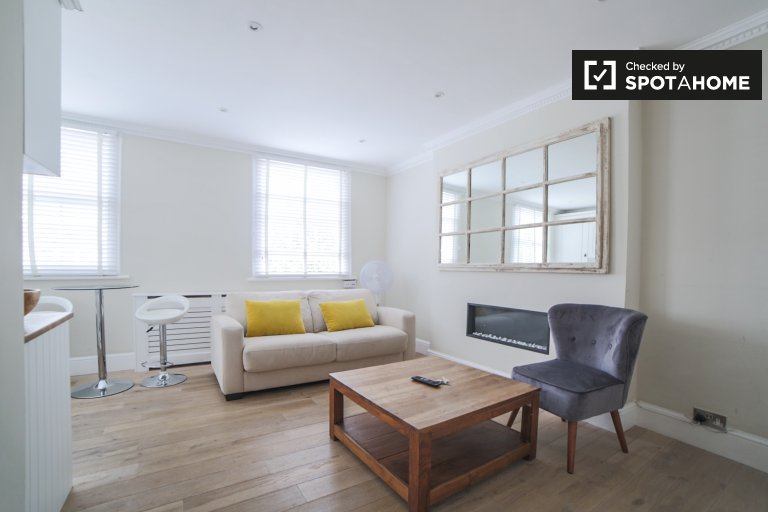 1-bedroom flat for rent in City of Westminster, London