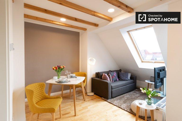 Prenzlauer Berg, Berlin'de kiralık 1 yatak odalı daire