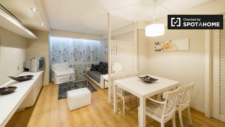 One Room Flat with AC, and Pool Access in Madrid