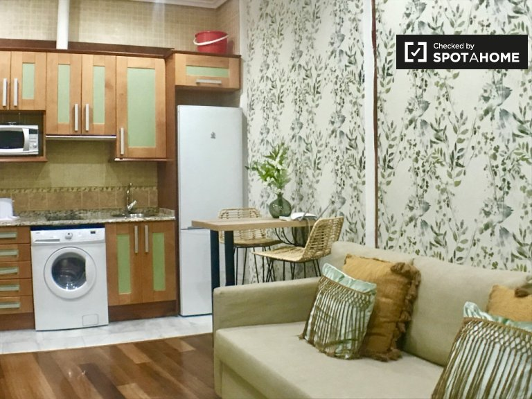 Cosy studio for rent in Centro, Madrid