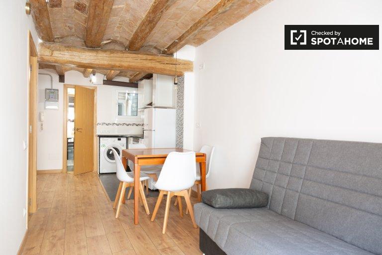Śliczne 1-pokojowe mieszkanie do wynajęcia w El Raval w Barcelonie