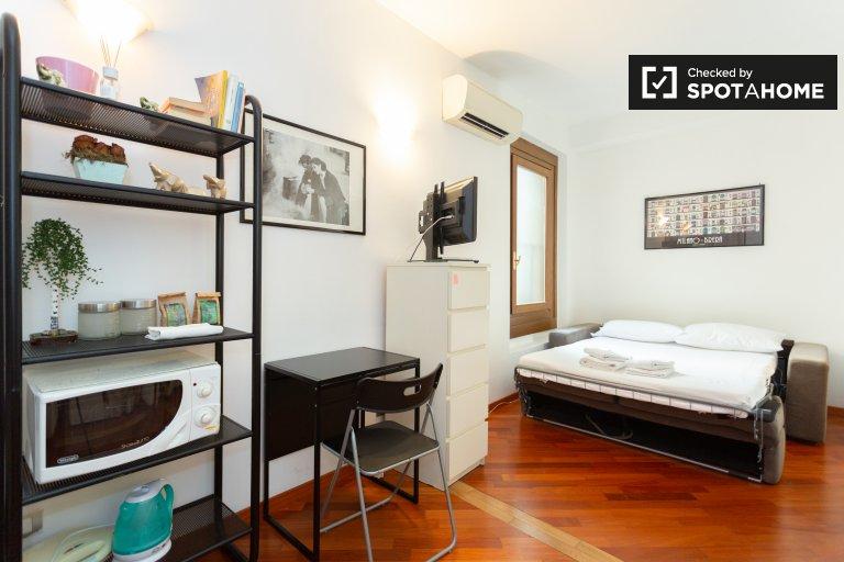 Accogliente monolocale in affitto a Ticinese, Milano