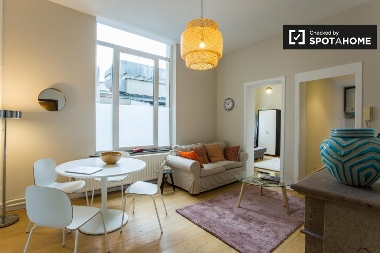 Modern 2-bedroom apartment for rent in Brussels City Centre