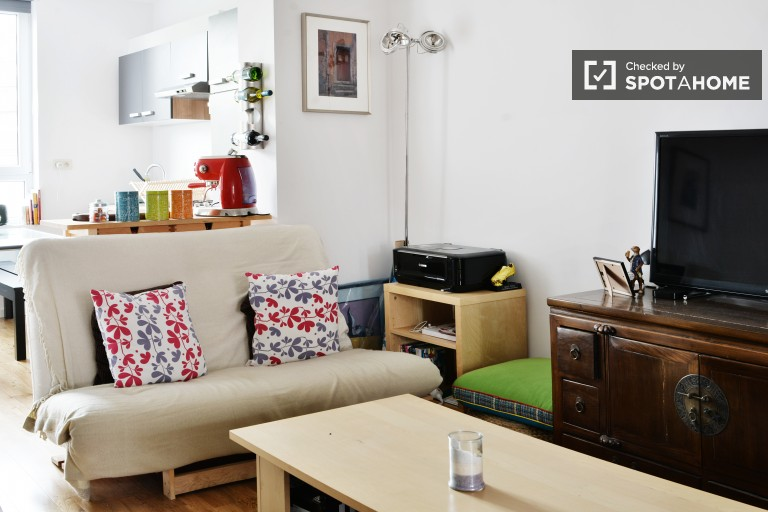 Spacious 1 Bed Apartment for Rent in Schaerbeek, Brussels