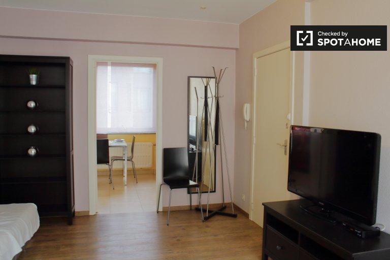 Coole 1-Zimmer-Wohnung zur Miete im Stadtzentrum von Brüssel