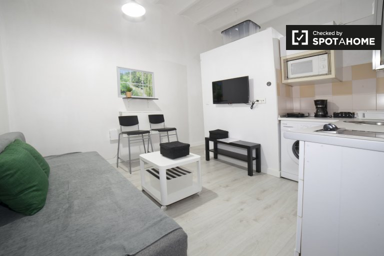 Studio apartment with 2 single beds for rent in Centro