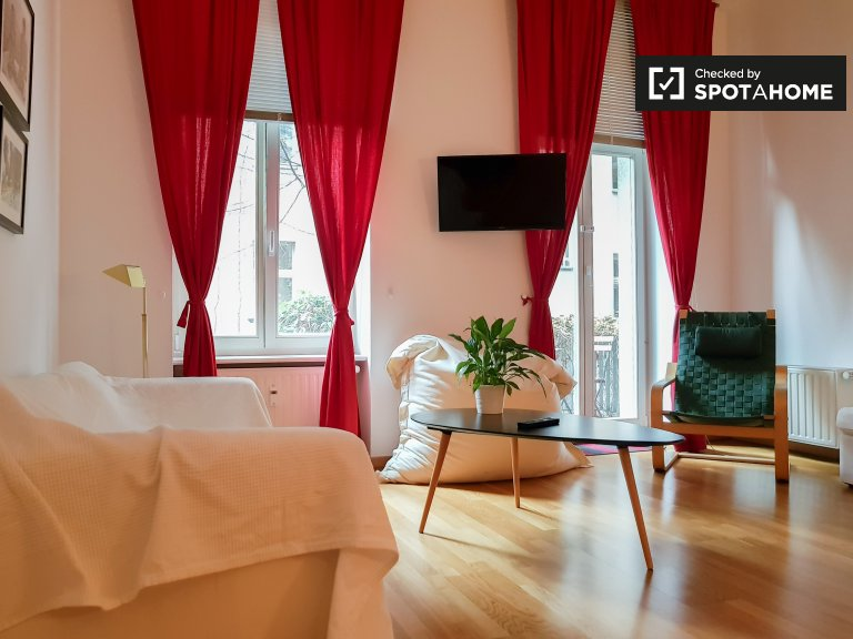 Przytulny apartament typu studio do wynajęcia w Mitte, Berlin