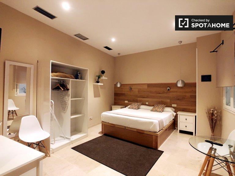Sober studio apartment for rent in Centro, Madrid