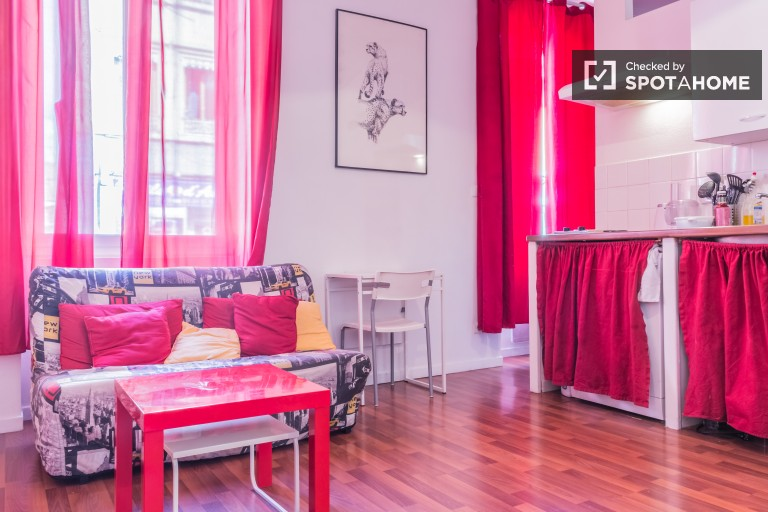 Sunny 1-bedroom apartment with modern furniture for rent in Villeurbanne area