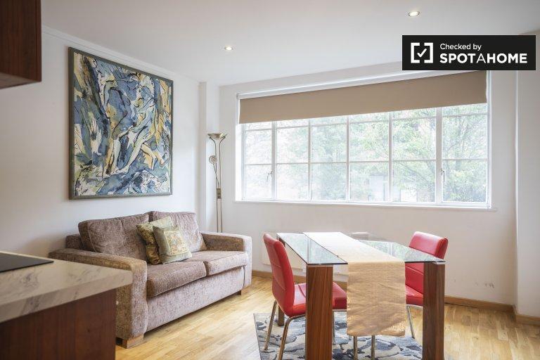 Jasny apartament z 1 sypialnią do wynajęcia w Kensington w Londynie