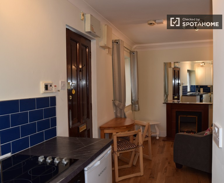 Modern, recently renovated studio apartment available to rent in The Liberties, Dublin