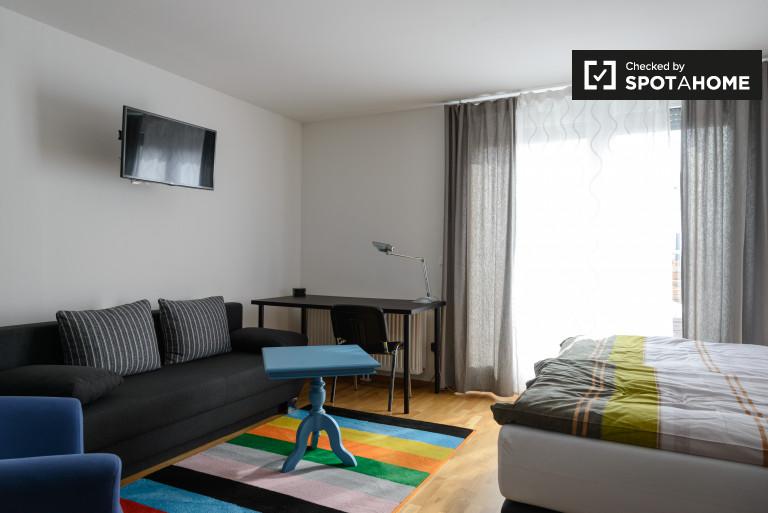 Spacious studio apartment for rent in Aspern area of Donaustadt