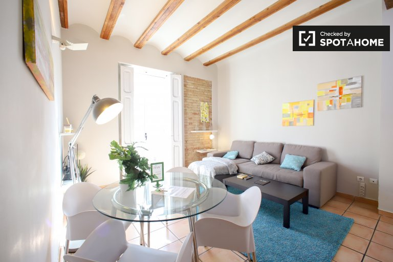 Stylish 1-bedroom apartment for rent in Extramurs, Valencia