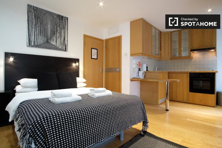 Studio-Wohnung zur Miete in St. Pancras, Zone 1
