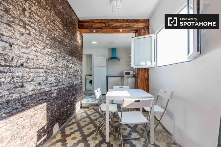 Appartement 1 chambre à louer à Extramurs, Valence