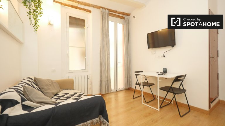 1 Bedroom Apartment For Rent In El Born, Barcelona