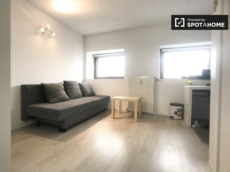 Funished room in 2-bedroom apartment Brussels City Centre