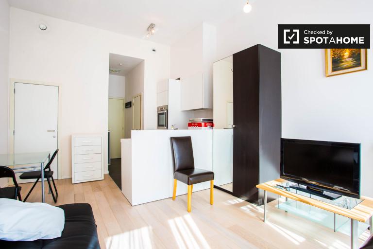 Jasny apartament typu studio do wynajęcia w Schaerbeek, Brussles