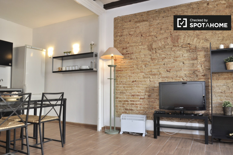 1-bedroom apartment for rent in El Raval, Barcelona