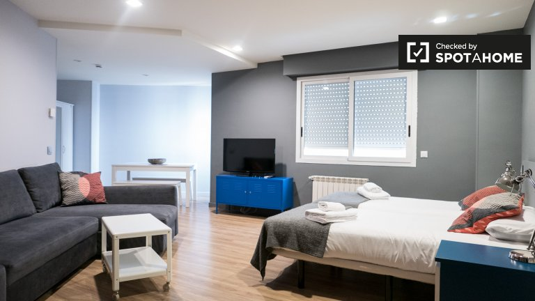 Studio apartment for rent in Centro in Madrid