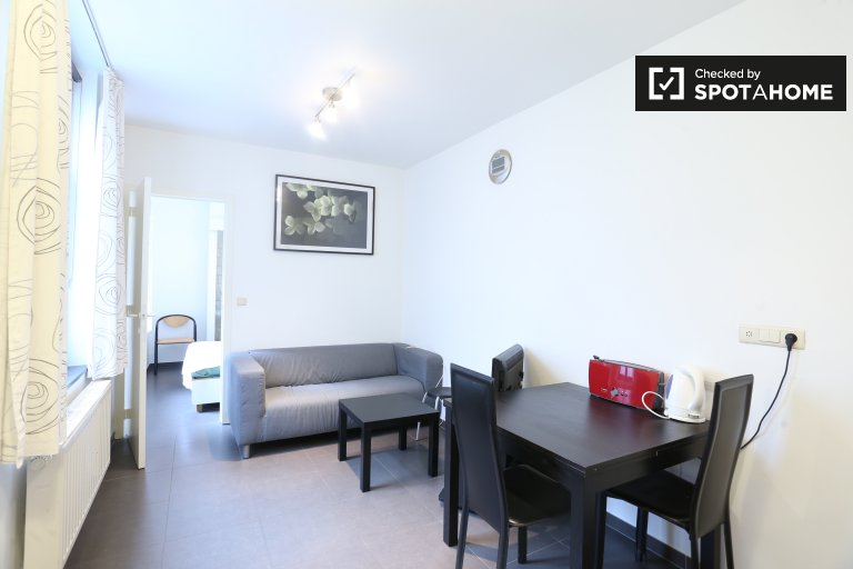 Cozy 1-bedroom apartment with central heat for rent in Ixelles