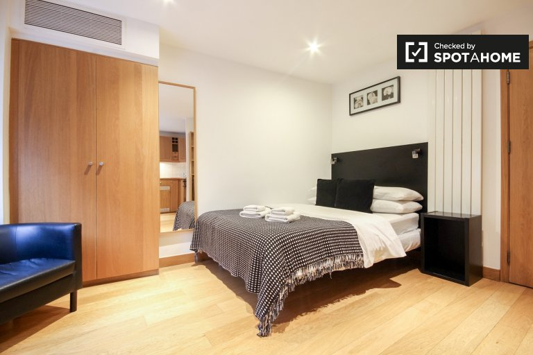 Umeblowane mieszkanie typu studio do wynajęcia w Kings Cross, Londyn
