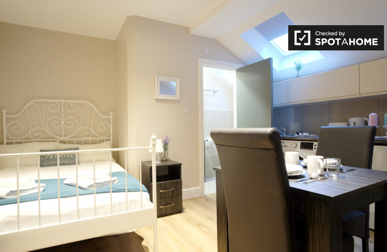 Cozy studio apartment to rent in Willesden Green