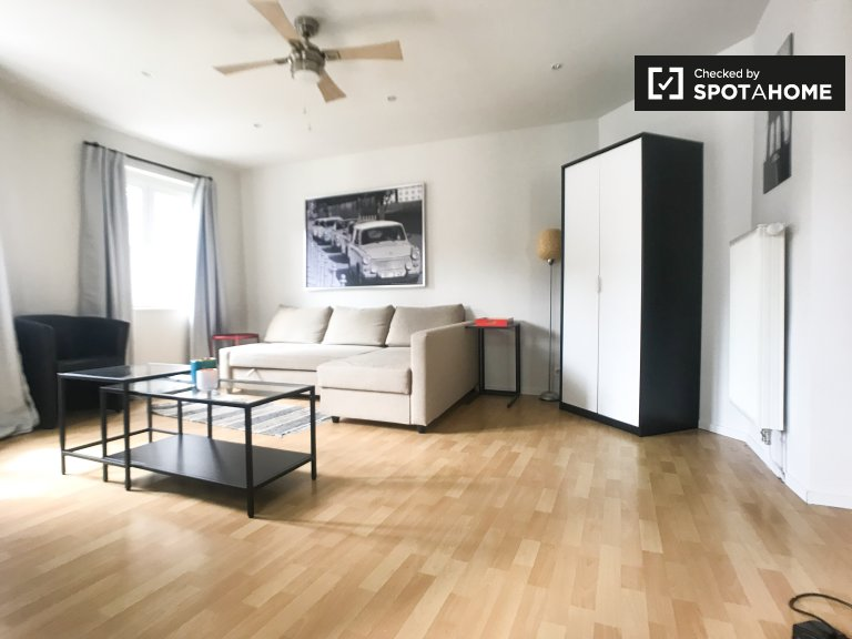 Studio apartment for rent in Bruxelles-centre, Brussels