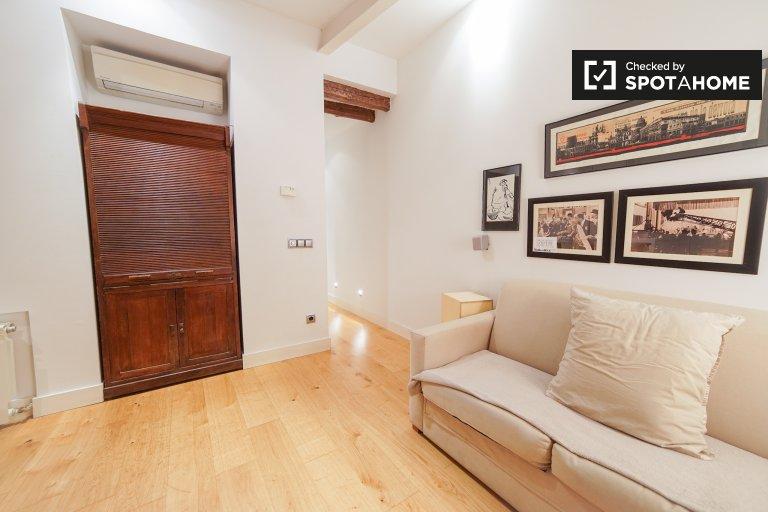 Nowoczesny apartament typu studio do wynajęcia w Salamance w Madrycie