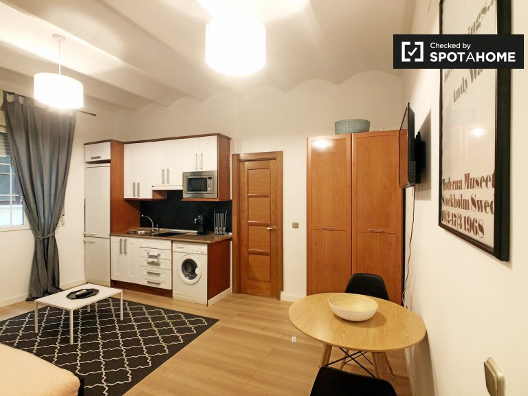 Stylish studio apartment for rent in Centro, Madrid