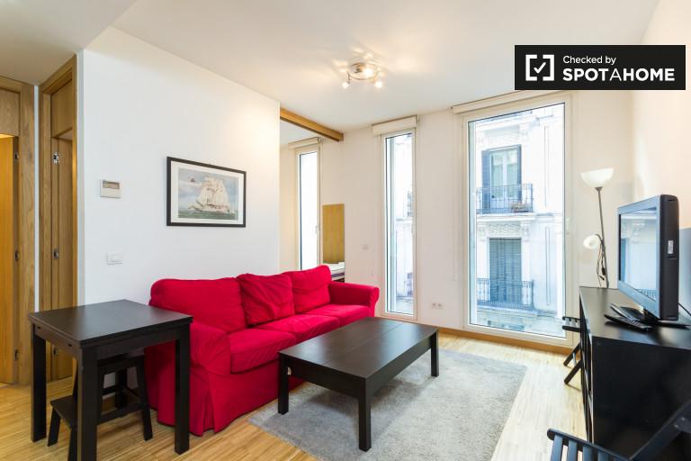 Bright 1-bedroom apartment for rent near Retiro in central Madrid