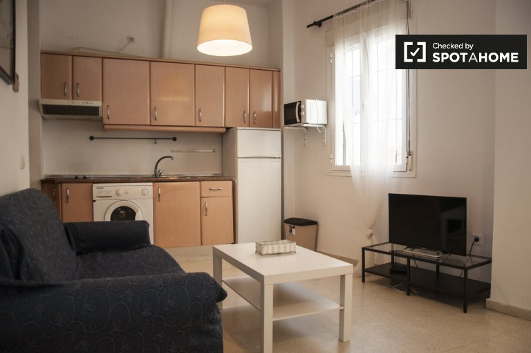 Furnished 1-bedroom apartment with terrace for rent in Alameda