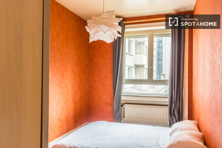 Pet-friendly, 1-bedroom apartment for rent in Brotteaux