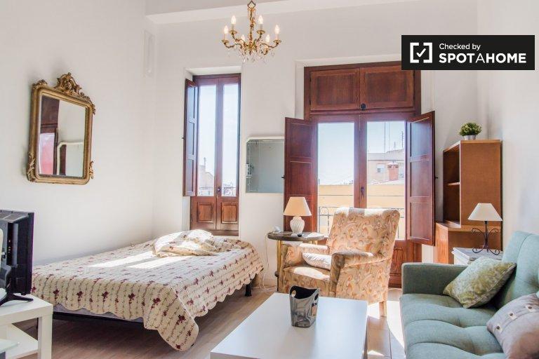 Monolocale unico in affitto a Poblats Marítims, Valencia