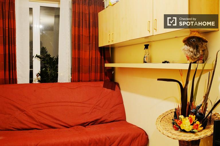 Bedroom 1 - Sofa bed