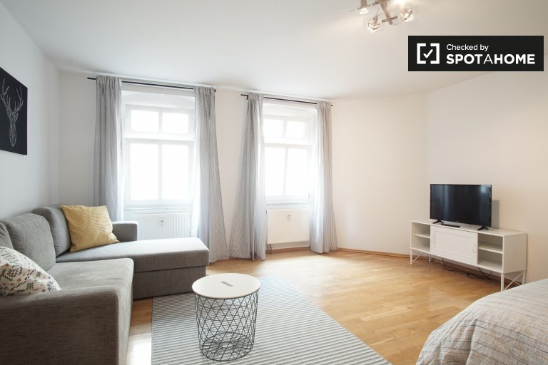 Spacious studio apartment for rent in Mitte