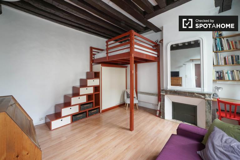 Studio apartment for rent in the 4th Arrondissement, Paris