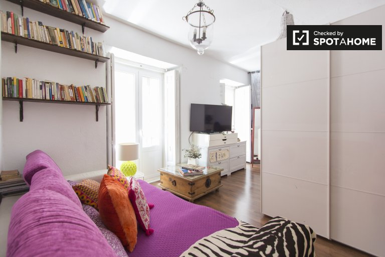 Spacious 4-bedroom apartment for rent in Centro, Madrid