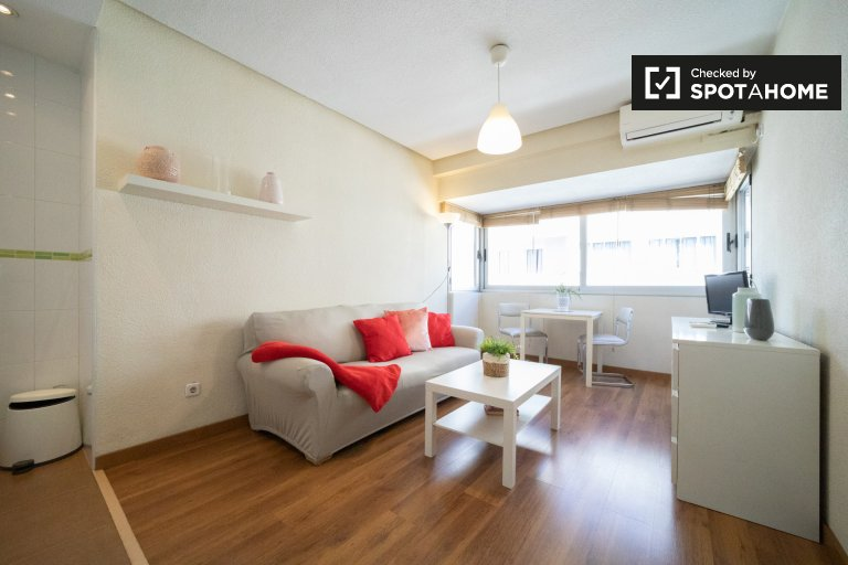 Bright 1-bedroom apartment for rent in Salamanca, Madrid