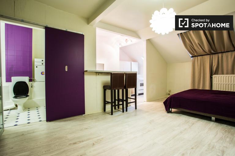 Sizeable studio apartment for rent in Ixelles near European Quarter