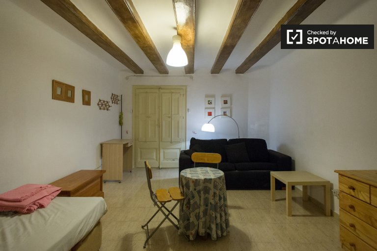 Cozy Studio apartment to rent in Gothic Quarter, Barcelona