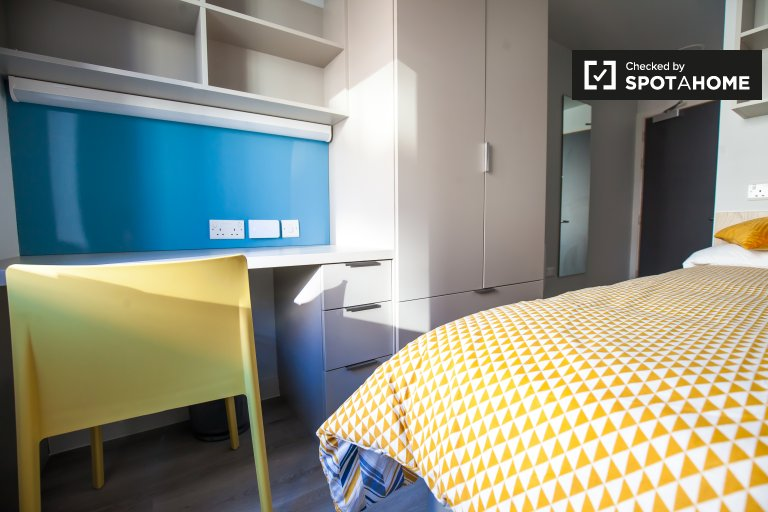 Fantastic room to rent in residence in Liberties, Dublin