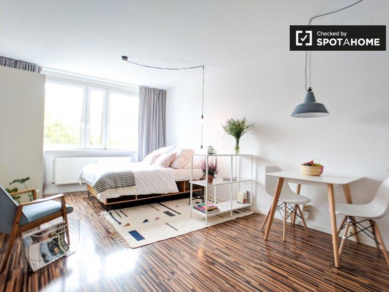 Nowoczesny apartament typu studio do wynajęcia w Mitte, Berlin