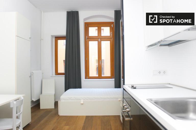 Studio apartment with shared terrace for rent in Friedrichshain-Kreuzberg area