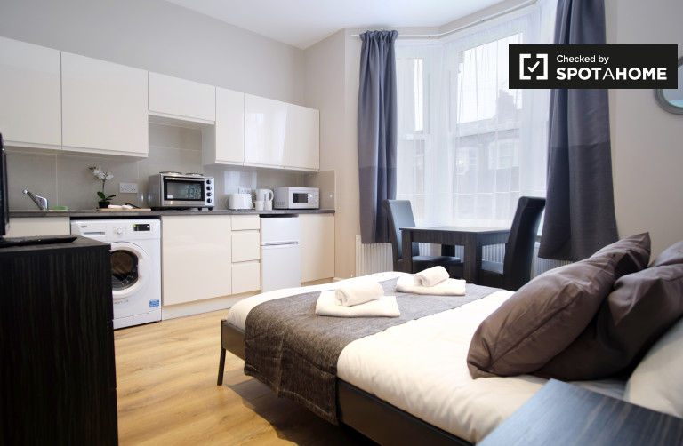 Modern studio apartment to rent in Willesden Green