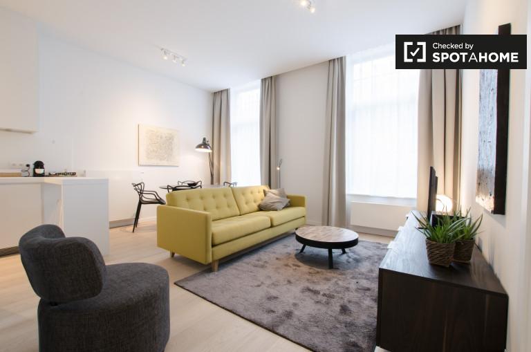 Wyremontowany apartament z 1 sypialnią do wynajęcia w Ixelles w Brukseli
