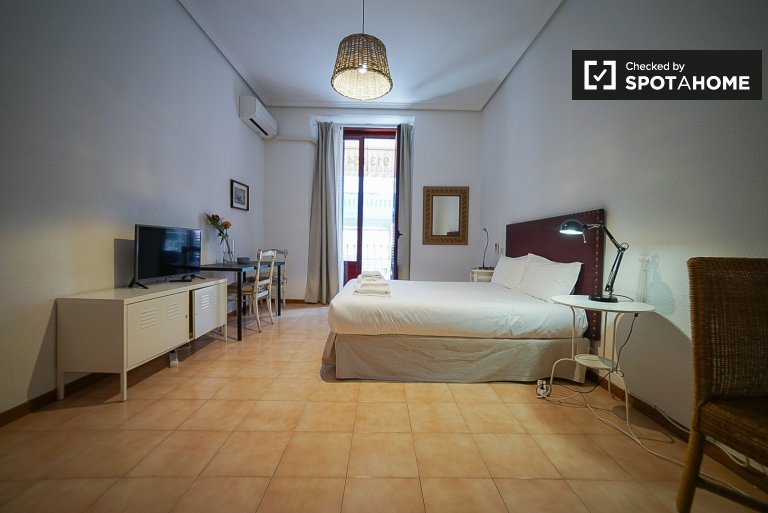 Bright 1-bedroom apartment for rent in Madrid Centro