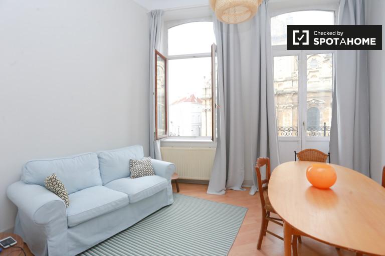 Studio apartment for rent - City center, Brussels