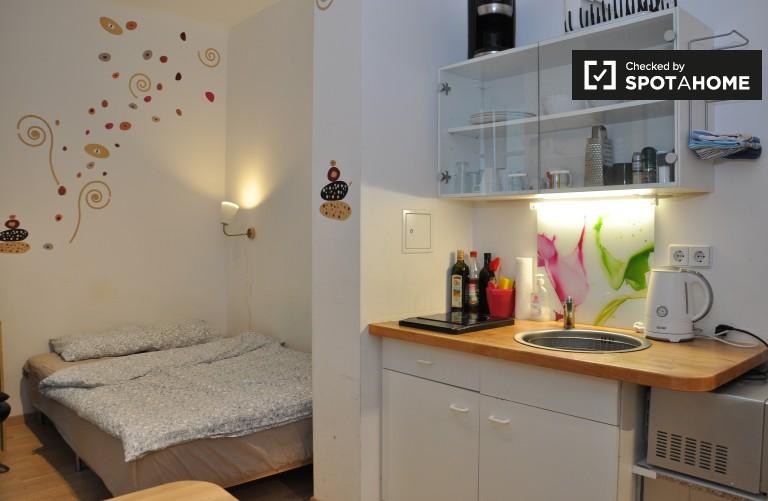Studio apartment for rent in Margareten